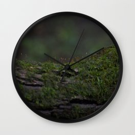 Almost Invisible  Wall Clock