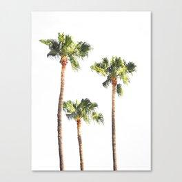 Minimal Palm Trees Threesome Canvas Print