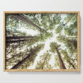 Green Forest Sky Trees Serving Tray