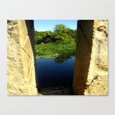 Framing a Pond Canvas Print