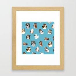 owlsowlsowls Framed Art Print
