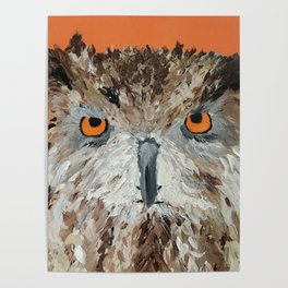 Wise Owl.  Hootie, Who, Who Poster