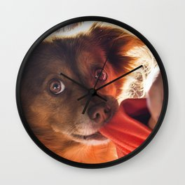 Dog playing with his owner Wall Clock