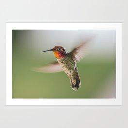 Aerial Maneuver Art Print