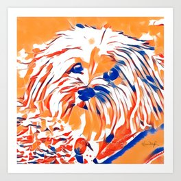 Copper the Havapookie Signed Art 2 Art Print
