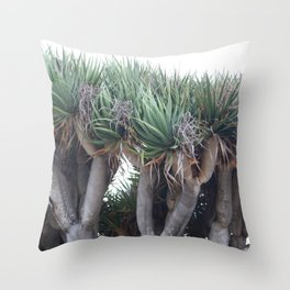 Dragon of San Diego Throw Pillow
