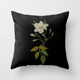 Rosa Semper Virens Mary Delany Delicate Paper Flower Collage Black Background Floral Botanical Throw Pillow