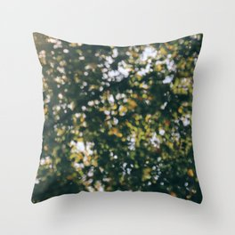 Memory of Summer Throw Pillow