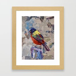 Painted Bunting Bird on Newsprint Framed Art Print