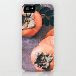 Persimmon 2 iPhone Case