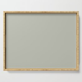 Intangible Light Pastel Green Grey Solid Color Pairs To Sherwin Williams Contented SW 6191 Serving Tray