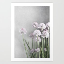 Lavender Flowers on Green Chives Art Print