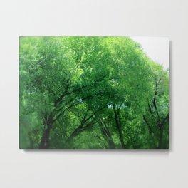 Tree Dance Turns to Rain Dance  Metal Print