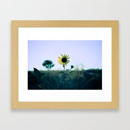 On The Way To California Framed Art Print