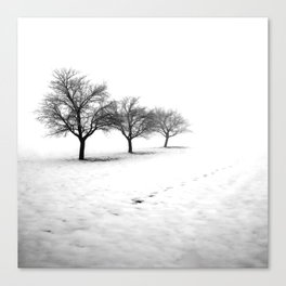 Winter Scape 3 Canvas Print