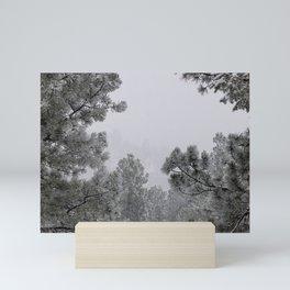 February Frost Mini Art Print