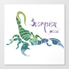Scorpion Mood  Canvas Print