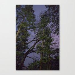 ANTI-SAKURA Canvas Print