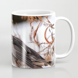Duck beauty in the snow Coffee Mug