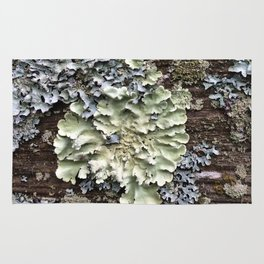 Nature's Fence Flowers Rug