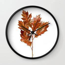 English Oak Cartoon Wall Clock