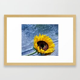 Longevity Framed Art Print