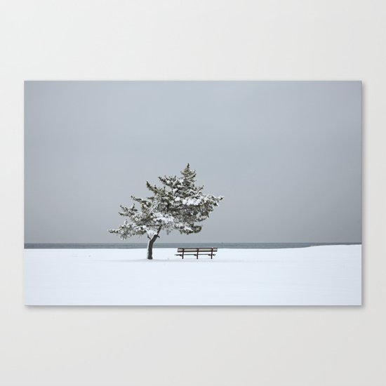 Lonesome Winter Canvas Print