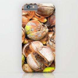 Coconut Husk Photography. Coir. Coconut Fibre. Coir Fibres iPhone Case