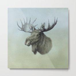 Moose, Elch, Elg Metal Print