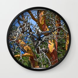 MADRONA TREE DEAD OR ALIVE Wall Clock