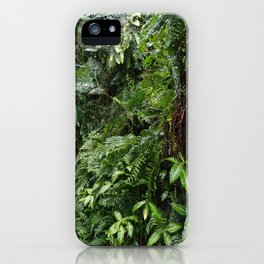 Tropical Forest 07 iPhone Case
