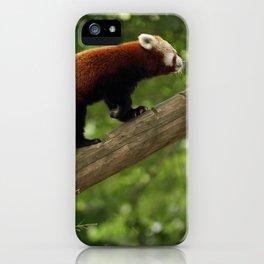 Happy Red Panda. iPhone Case