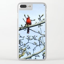 Lad In Red Clear iPhone Case