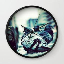 Pidgeons Of 6th Street Wall Clock