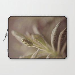 Lavender Laptop Sleeve