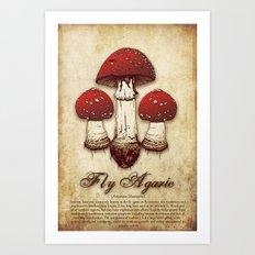 Fly Agaric Art Print
