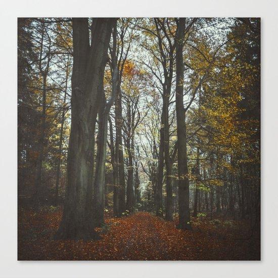 fall alley Canvas Print