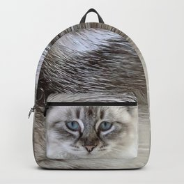 Cat with Blue Eyes Backpack
