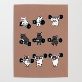 OLYMPIC LIFTING  FRENCH BULLDOG Poster
