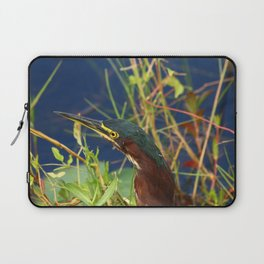 Green Heron Portrait Laptop Sleeve