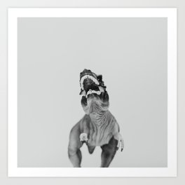 Dino Collection 4 of 4 Art Print