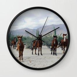 Bahía de los Ángeles Wild Horses Wall Clock