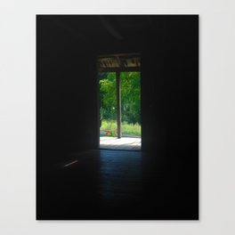 Darkness Into Light Canvas Print