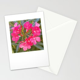 Pink flowers in spring Stationery Cards
