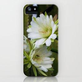 Cereus Morning  iPhone Case