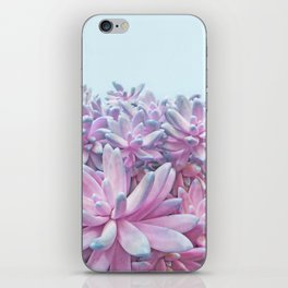 Sweet Succulents iPhone Skin