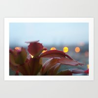 cacti Art Prints featuring Cacti by VAWART