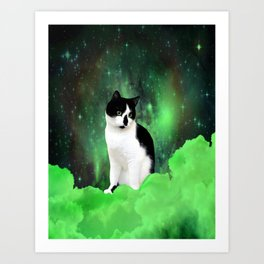 Gypsy Da Fleuky Cat and the Kitty Emerald Night Art Print
