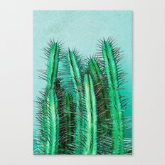 A prickly cactus on concrete Canvas Print