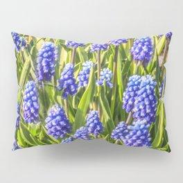 Grape hyacinths muscari Pillow Sham